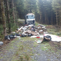 How much waste was dumped in the Wicklow and Dublin mountains after Christmas? It's the week in numbers