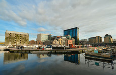 Poll: Should major tech companies build homes when they expand in Ireland?