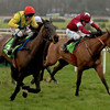 2017 Gold Cup winner to miss Leopardstown this weekend due to the ground