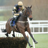 Expect to see a completely different Bellshill as Gold Cup the feature at Leopardstown