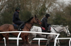Equine flu outbreak cancels all horse racing in Britain but Irish racecourses stay open