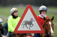 Quick action and 'war-room of vets' can restrict equine flu effects, racing chief insists