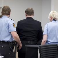 Breivik trial interrupted by shoe-thrower