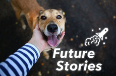 Goodbye woofs and meows, hello doggie translators: Here's the future of being a great pet owner