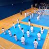 Top Irish Karate athletes threatened with Olympic expulsion amid 24-hour deadline