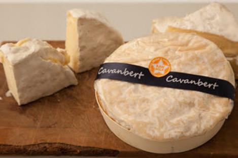 Cavanbert cheese.