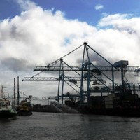 Man arrested over €330k drug seizure at Dublin Port