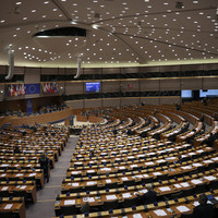 Two MEPs elected in South and Dublin constituencies won't be able to take their seats until the UK has left