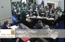 LIVE: British-Irish Parliamentary Assembly takes place in Dublin
