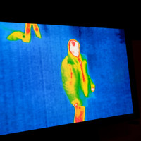 Community service for mugger caught hiding in bushes by gardaí using thermal imaging