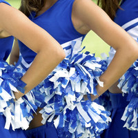 Wisconsin school ends cheerleading awards for best breasts and bum