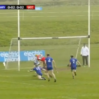 This superb goal from a Premier star was a magical moment in the Fitzgibbon Cup final