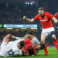 Wales will have to push on towards Grand Slam without injured lock Hill