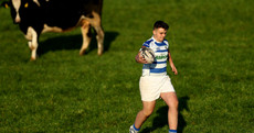 Connacht kingpins Garbally power into Schools Cup final with six-try win