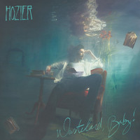 Hozier's second ride-filled album is finally out, but what are critics making of it?
