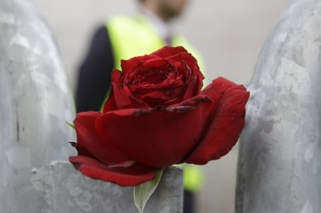 A flower left in tribute to the terror attack victims at the Oslo court.