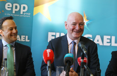 Fine Gael European election candidate says May vote can send 'green jersey' message to Brexiteers