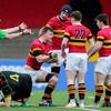 Christians run seven tries past Ardscoil to book all-Cork Munster Schools Senior Cup final