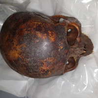 Gardaí recover head of 800-year-old mummy stolen from crypt of Dublin Church