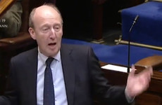 Shane Ross apologises for saying Sinn Féin TD was 'like a donkey'