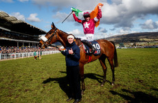 Head of the class: Getting Gordon Elliott's yard ready for Cheltenham