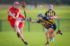 Majestic Dalton fires Kilkenny one step closer to league four-in-a-row