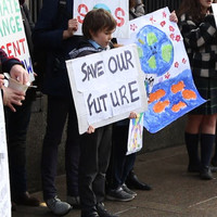 'We're going to go extinct if we don't do something': Irish school students on why they're striking for climate action