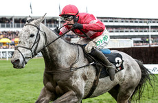 Duc leads home a 1-2-3 for Ireland in Arkle