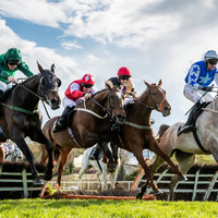 WIN: An incredible VIP day for four at the Punchestown Festival