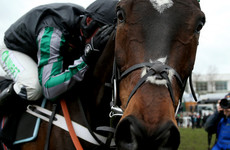 'Absolute warrior' Altior takes Champion Chase at Cheltenham