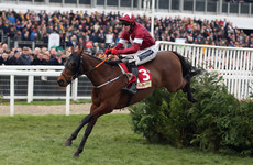Relief for Gordon Elliott as Tiger Roll trumps cross-country rivals again