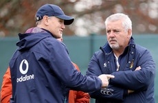 'He's probably more outspoken than I am': Schmidt braced for battle with former team-mate Gatland