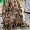8ft fatberg made of wet wipes and nappies removed from sewer in Wicklow
