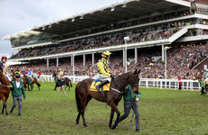 Donn McClean's Cheltenham review: Lasting memories will endure after an extraordinary festival
