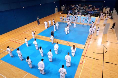 Irish karate athletes (file photo).