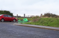 Body of young horse that was used for sulky racing dumped on Dublin road