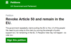 Over 2 million people sign petition on Parliament website to revoke Article 50