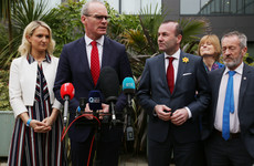 If UK seek long extension, they'll have to run candidates in European elections, says Coveney