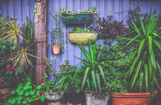 6 really easy ways to transform your garden this spring, according to pros who do it every day