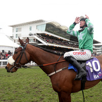 Presenting Percy 'lame as a duck' after Gold Cup and ruled out for the season