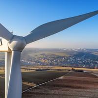 Irish Wildlife Trust lodges objection to Bord na Móna windfarm in Co Longford