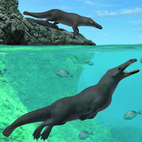 Fossil of prehistoric four-legged whale discovered in Peru