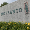 French court upholds guilty verdict against Monsanto over poisoning of farmer who used its weedkiller