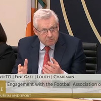 How relevant is the Kerins Supreme Court ruling to Oireachtas committees?