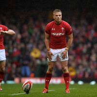Anscombe's future decided as Wales out-half joins Ospreys