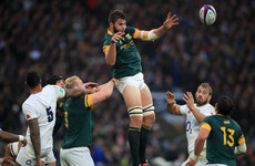 Sale pull off major coup with signing of Springbok second row