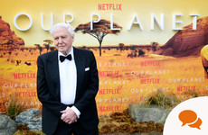 Lynn Ruane: 'Now is not the time to stop listening to David Attenborough'