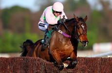 One of Willie Mullins' forgotten stars could return to action at Punchestown