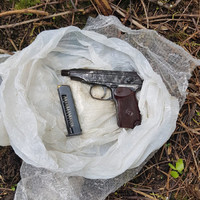 Gardaí discover loaded pistol and shotgun cartridges during searches in west Dublin
