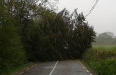 21,000 without electricity and fallen trees blocking roads as Storm Hannah batters the country